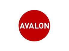 Web y diseño en Avalon